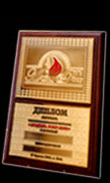 Metal plaques, diplomas, and certificates - custom work